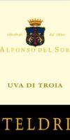 casteldrione-uva-di-troia-d-alfonso-del-sordo